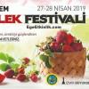 2.Emiralem Çilek Festivali 2019