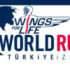 Wings For Life World Run İzmir 2019