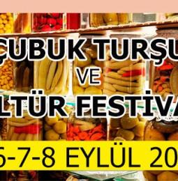 14. Çubuk Turşu ve Kültür Festivali 2019