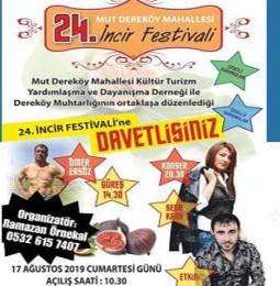 24.Mut Dereköy Mahallesi İncir Festivali 2019