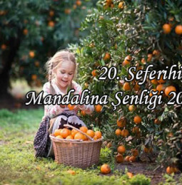 20.Seferihisar Mandalina Şenliği 2019
