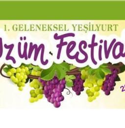 1. Alaşehir Yeşilyurt Üzüm Festivali 2019