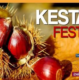Ödemiş Kestane Festivali | 2-3 Kasım 2019