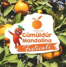 Gümüldür Mandalina Festivali / 23 Kasım 2019