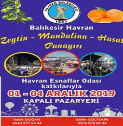 Havran Zeytin Mandalina Hasat Panayırı 2019