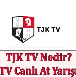 TJK TV Nedir? TJK TV Canlı At Yarışı İzle
