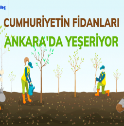 Ankara Yeşilin Başkenti Projesi Nedir? (yesilinbaskenti.com)