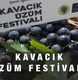 Kavacık Üzüm Festivali 2021