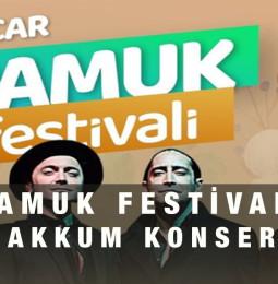 Pamuk Festivali ve Öykü Gürman Konseri
